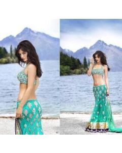 Indian Designer Heavy party Wear Lehenga choli Sea green with dull gold embroidered Croptop and contrast border in purple with Free Shipping