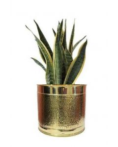 Handcrafted Brass Hammered Design Plant Container/Planter/Flower Port || for Indoor/Outdoor Plant