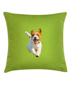 Creative Gifts Custom Personalized  Photo Pillow  or Cushion Cover with Your Image and Text for Home Decor