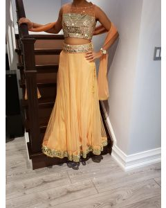 Indian party Wear Pastel Peach Color Net Lehenga Choli (Croptop) with Mirror work
